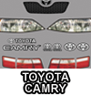 Camry Graphics