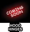 Hood Hinges